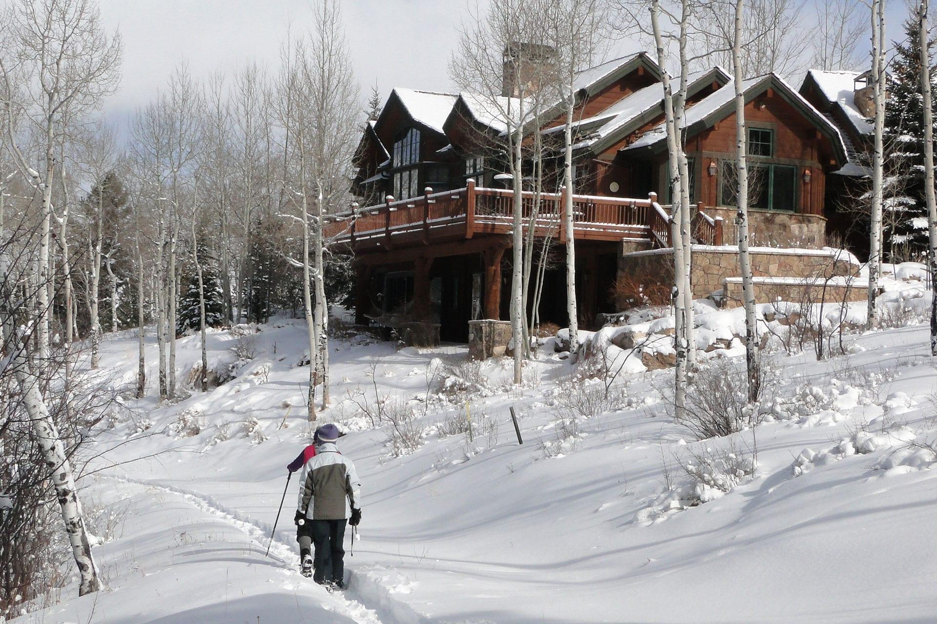 Prepare Your Trees for Winter | Blog | Front Range Arborists