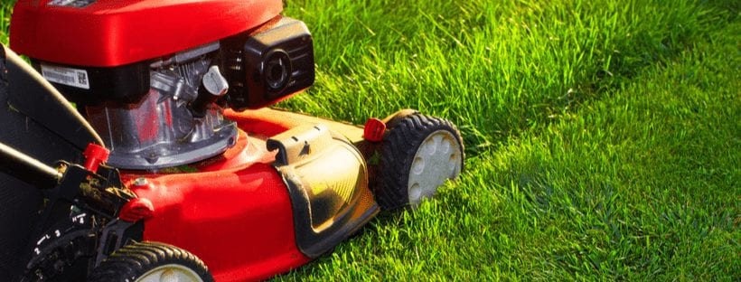 A lawn mower making mistakes in a yard